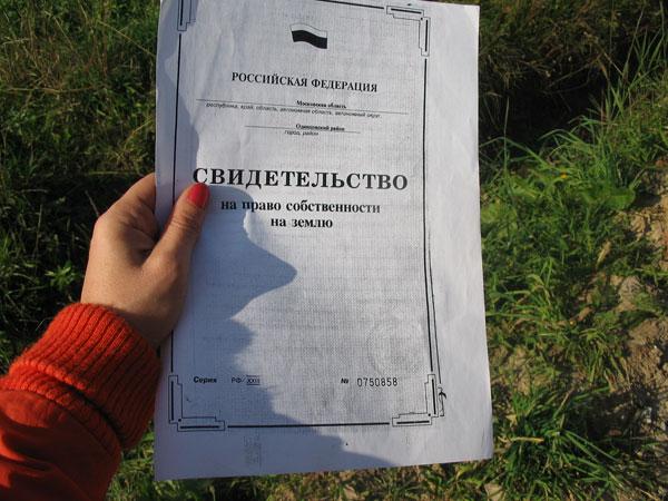 договор на выполнение работ по межеванию образец