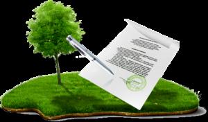 Межевание земель общего пользования СНТ