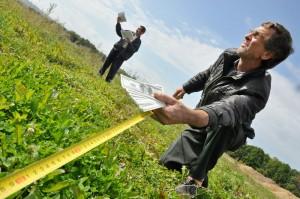 Стоимость межевания земельного участка